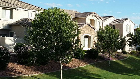 Arizona homes, townhomes,  patio homes and condos